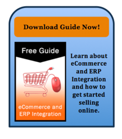 ERP eCommerce Intergration Guide